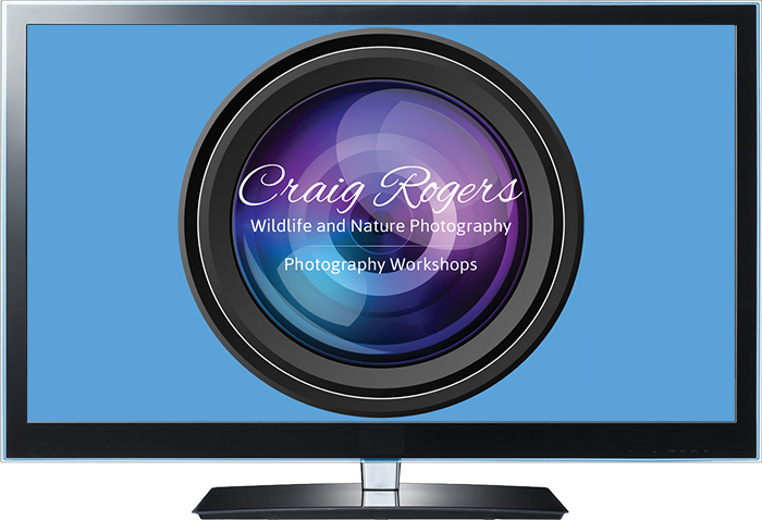 Nature Photography Talks/Guest Speaker – Craig Rogers